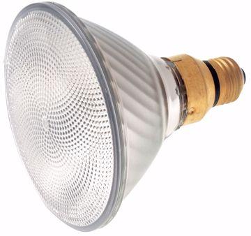 Picture of SATCO S2259 80PAR38/HAL/XEN/FL /120V Halogen Light Bulb