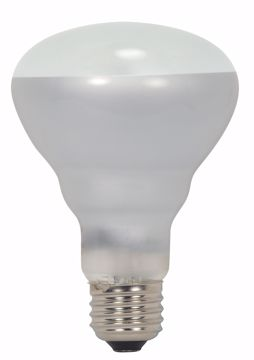 Picture of SATCO S2451 45BR25/FL/HAL 120V Halogen Light Bulb