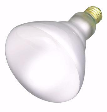 Picture of SATCO S2853 65BR40 FLOOD 120 Volt Incandescent Light Bulb