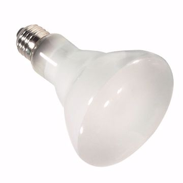 Picture of SATCO S4415 65BR30/FL/HAL 130V Halogen Light Bulb