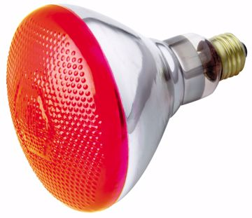 Picture of SATCO S4424 100W BR-38 RED 120 Volt Incandescent Light Bulb
