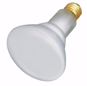 Picture of SATCO S4887 65BR30/TF SHATTER PROOF Incandescent Light Bulb