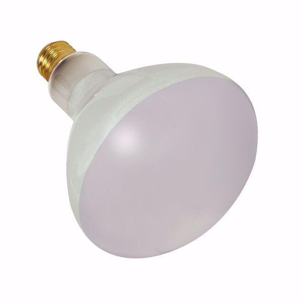 Picture of SATCO S7004 300BR40/FL/12V POOL LAMP Incandescent Light Bulb