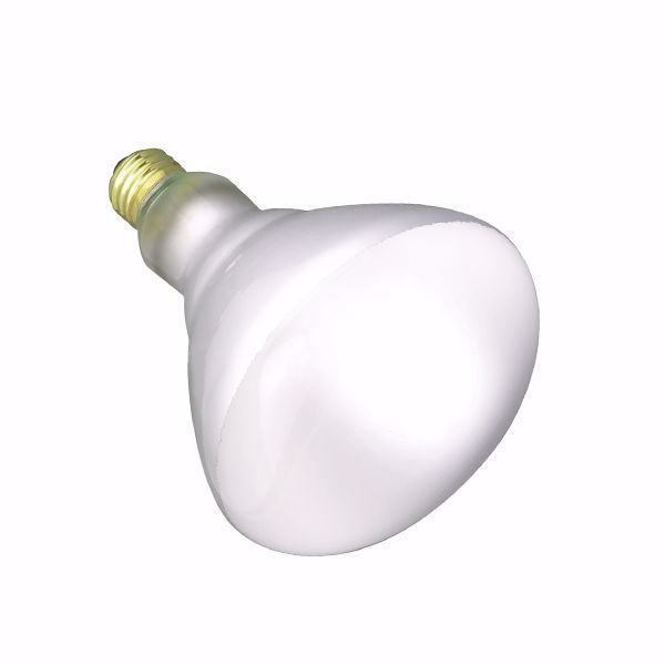Picture of SATCO S7011 120BR40 FL 130V SHATTER Incandescent Light Bulb