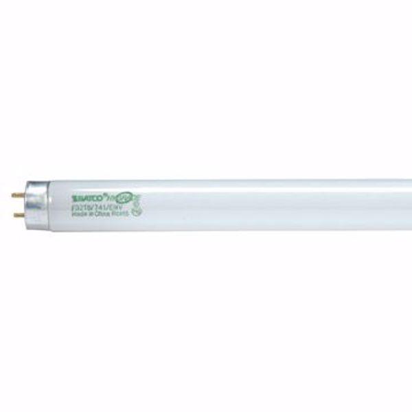 Picture of SATCO S8430 F32T8/865/HL/ENV Fluorescent Light Bulb