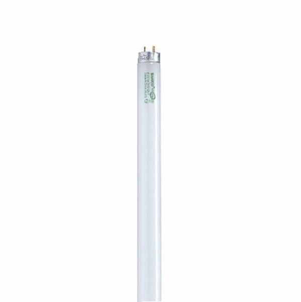 Picture of SATCO S8445 F32T8/841/XL/ENV Fluorescent Light Bulb