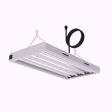 Picture for category T5 HO High Performance Lamps