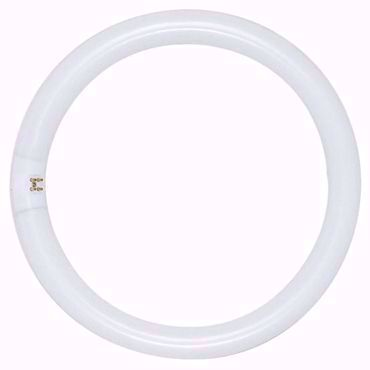Picture for category Circline - T5-T6-T9