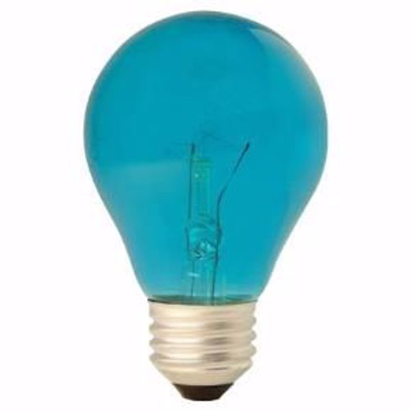 Picture of GE 22732 25W A19 TRANS. Teal 120V Incandescent Light Bulb 6 Pack