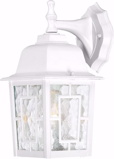 """Picture of NUVO Lighting 60/3484 Banyan - 1 Light - 12"""" Outdoor Wall with Clear Water Glass; Color retail packaging"""