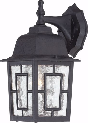"Picture of NUVO Lighting 60/3486 Banyan - 1 Light - 12"" Outdoor Wall with Clear Water Glass; Color retail packaging"