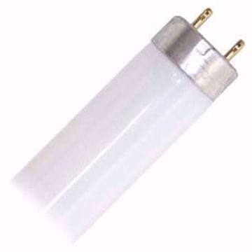 Picture of Sunlite 30128 17 Watts 6500K T8 F17T8/TL865 ALTO 24''