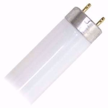 Picture of GE 26667  F32T8/SP35/ECO Straight T8 Fluorescent Tube Light Bulbs - Case of 36