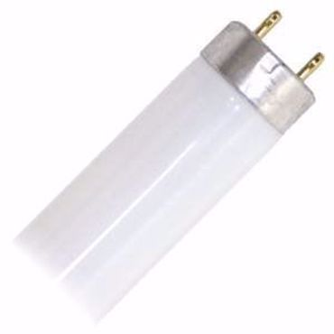 Picture for category F32T8 - 3000 Kelvin - T8 Linear Fluorescent Tubes