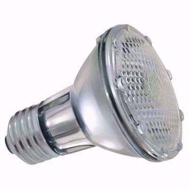 Picture for category Halogen PAR Light