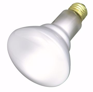 Picture of SATCO S2817 65BR30/FL 2/PACK 120 Volt Incandescent Light Bulb