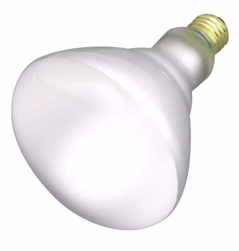 Picture of SATCO S2853 65BR40 FLOOD 120 Volt Incandescent Light Bulb