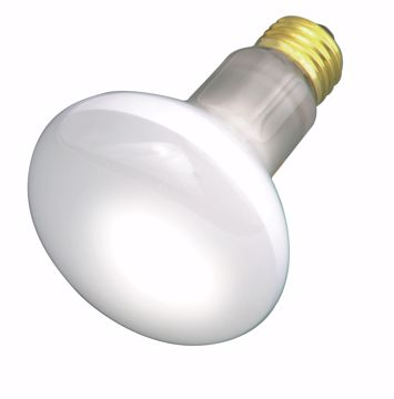 Picture of SATCO S3210 30R20 RFL Standard BASE Incandescent Light Bulb