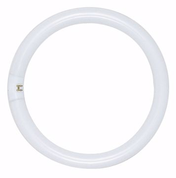 Picture of SATCO S6597 FC27T6/WW/27K 4-PIN Fluorescent Light Bulb