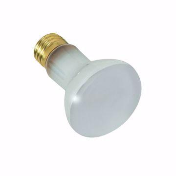 Picture of SATCO S7001 100R20/FL 130V SHORT E26 POOL Incandescent Light Bulb