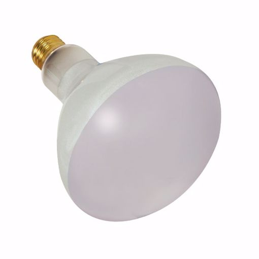 Picture of SATCO S7003 300BR40/FL/130V POOL LAMP Incandescent Light Bulb