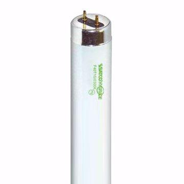 Picture of SATCO S7964 F40T10 6500K EX65 Fluorescent Light Bulb