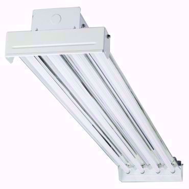 Picture for category T5 High Performance Lamps